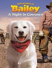 Bailey'nin Maceraları: Kasabada Bir Gece
