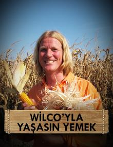 Wilco'yla Yaşasın Yemek:Keskin Yolculuk