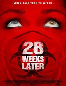 28 Hafta Sonra