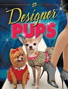 Tasarımcı Köpek
