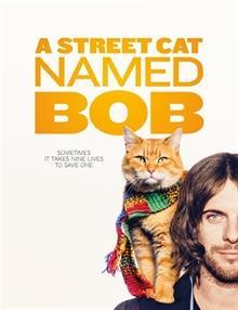Sokak Kedisi Bob