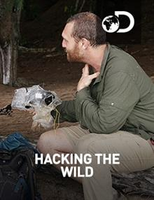 Hacking The Wild : Curse Of The Jungle