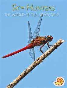 Sky Hunters - World of the Dragonfly